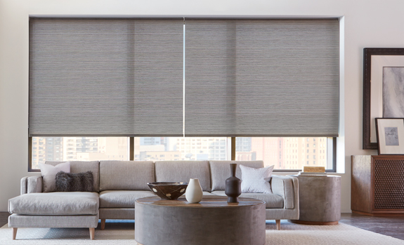 wide roller shades