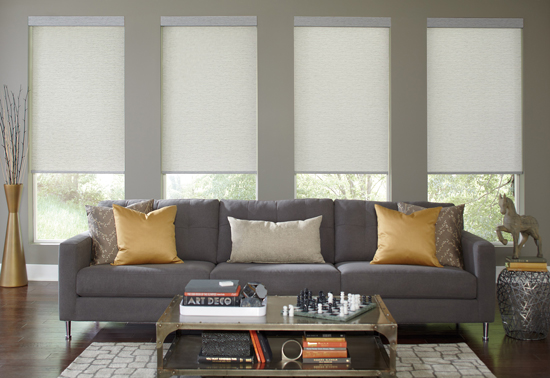 long window roller shades